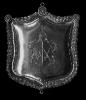 Zilveren koningsplaat_28